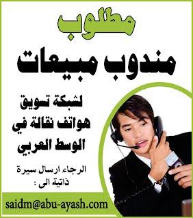 אביטל הולדנגרבר - לימודי ערבית
